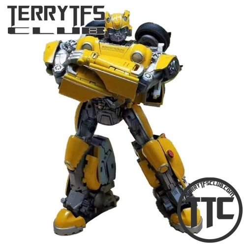 Transform Element TE TE02 Beetle Bumblebee
